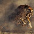 Sabre Tooth Pounce by Daniel Eskridge