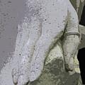 Sacramento Hand by Michiale Schneider
