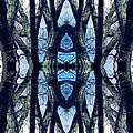 Sacred Grove 1 by Sarah Loft