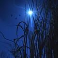 Sacred Moon... by Arthur Miller
