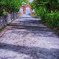Sacromonte Abbey Entrance by Joan Carroll