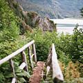 Saddle Trail Bridge by Kate Lamb