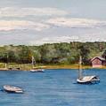 Safe Harbor by Mimi Schlichter