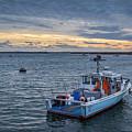 Safe Harbor by Scott Patterson