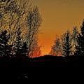 Saffron Sunset by Elizabeth Tillar