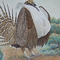 Sage Grouse by Cherry Woodbury
