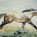Sage Runner by Debra Sandstrom