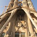 Sagrada Familia Church In Barcelona Antoni Gaudi by Matthias Hauser