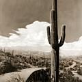 Saguaro Cactus 3 by Marilyn Hunt