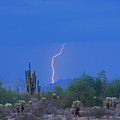 Saguaro Desert Lightning Strike Fine Art  by James BO  Insogna