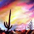 Saguaro National Monument by Victoria Wills
