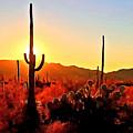 Saguaro National Park Sunset by Dr Bob Johnston