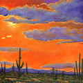 Saguaro Sunset by JOHNATHAN HARRIS