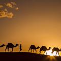 Sahara Desert Sunset by Lindley Johnson