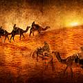 Sahara by Svetlana Sewell