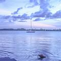 Sail Away Devils Island by Carmin Wong