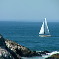Sail Away by Donna Thomas