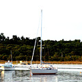 Sail Boat At Anchor  by Bruce Gannon