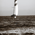 Sail Boat Coming Ashore 2 by Marilyn Hunt