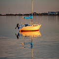 Sail Boat In Roanoke Sound 1x2 Ratio Img_3969 by Greg Kluempers