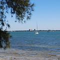 Sail Boat On Sarasota Bay by Gary Wonning