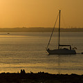 Sail Boat Sunset by Chris Pickett