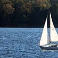 Sail Boat by Thomas Dowd