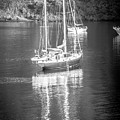 Sail Boat Yaht Parked At Harbor Bay by Alex Grichenko