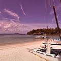Sail Boats On Tropical Beach by Sophie McAulay