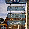 Sail Inn by Thom Zehrfeld