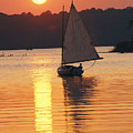 Sailboat And Sunset, South River by Skip Brown