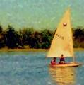 Sailboat by Anita Burgermeister