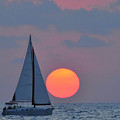 Sailboat At Sunset  by Shay Levy