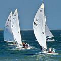 Sailboat Championship Racing 5 by Scott Cameron