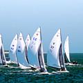Sailboat Championship Regatta by Scott Cameron