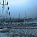 Sailboat Harbor by Karol Livote