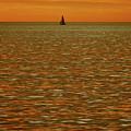 Sailboat In Golden Sunset  by Toula Mavridou-Messer