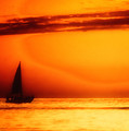 Sailboat In Orange by Lyle  Huisken