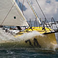 Sailboat Le Pingouin Open 60 Charging  by Dustin K Ryan