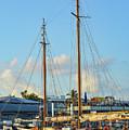 Sailboat, Mast, And Sails by Bob Phillips