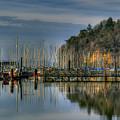 Sailboat Reflections by David Patterson