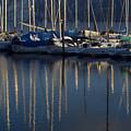 Sailboat Reflections by Idaho Scenic Images Linda Lantzy