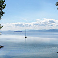 Sailboat Resting by Felipe Adan Lerma