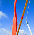 Sailboat Rigging by Dana Edmunds - Printscapes
