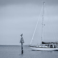 Sailboat by Ron Pate