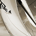 Sailboat Sails And Spinnaker Fate Beneteau 49 Charelston Sc by Dustin K Ryan