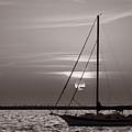 Sailboat Sunrise In B And W by Steve Gadomski