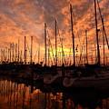 Sailboat Sunset by Greg Kear