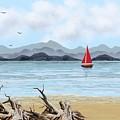 Sailboat by Tony Rodriguez