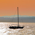 Sailboat With Bike by Brian O'Kelly